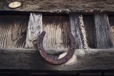 OORT-horseshoe