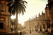 sevilla-warm-final-resized